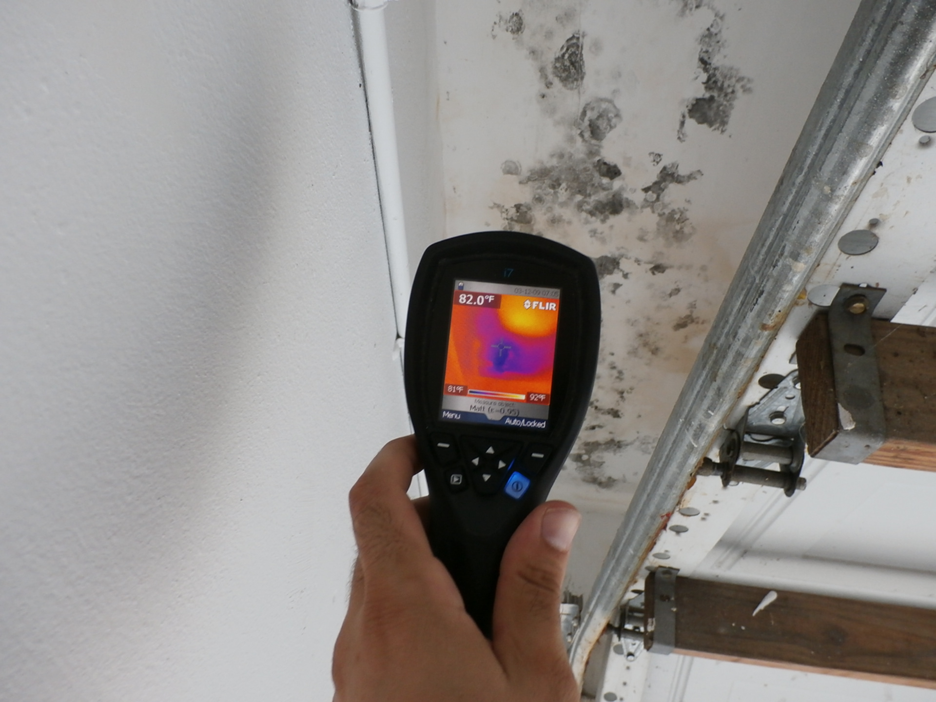 Mold Inspector Miami Ft Lauderdale Property Essment